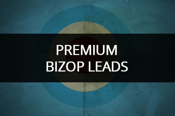 Buy Leads - My Amazing Formula